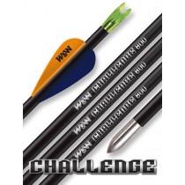Win&Win Challenge Pfeil