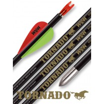 Win&Win Tornado Pfeil